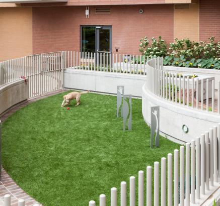 Dog Park at Camden NoMa Apartments in Washington DC