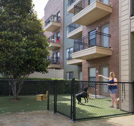 Dog Park at Camden Orange Court Apartments in Orlando, Florida
