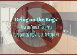 Bring on the Bugs: How to Combat the Pest Population from Your Apartment