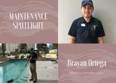 maintenance spotlight